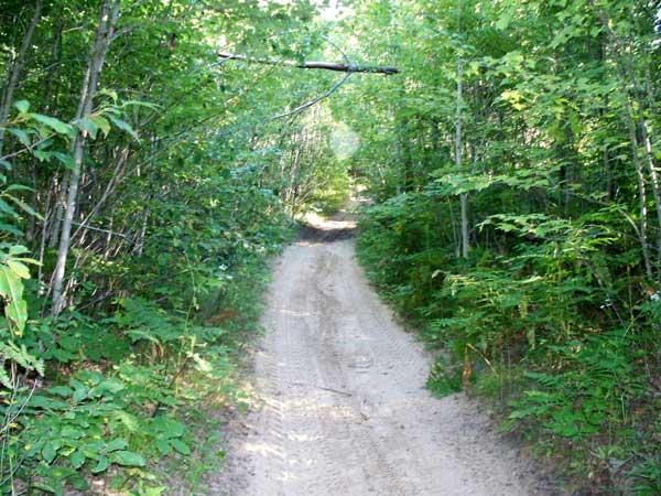 Bull Gap Trail Information Vvmapping Com