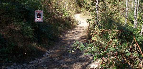 Pinnacle Creek Trail Information Vvmapping Com